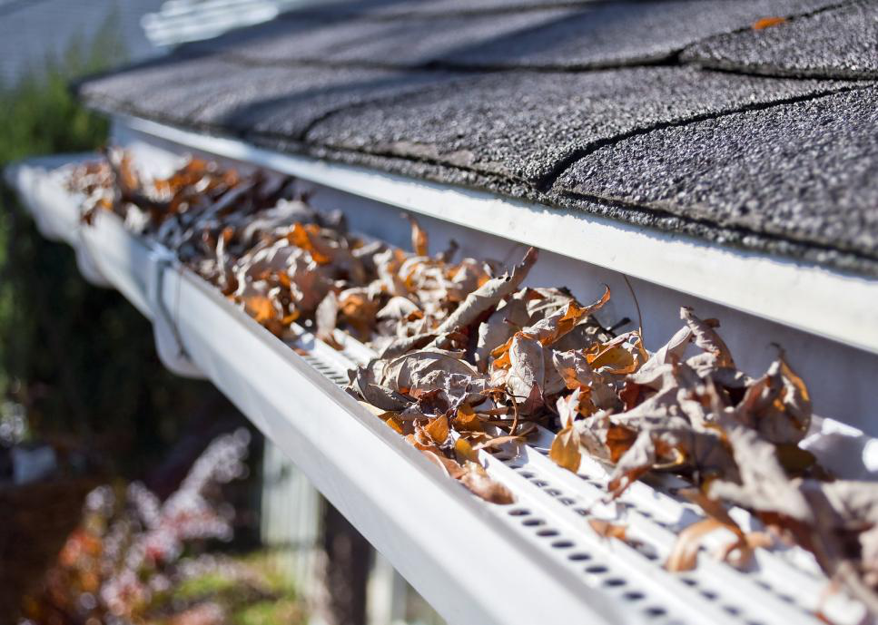 4 Benefits of Roof Gutter Guards