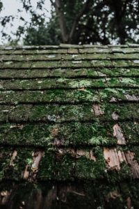 Why Is DIY Roof Repair Highly Discouraged