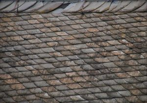 Read more about the article 4 Signs of Wind Damage on Your Roof