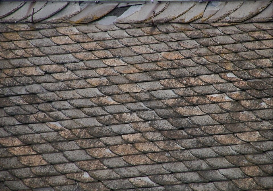 4 Signs of Wind Damage on Your Roof