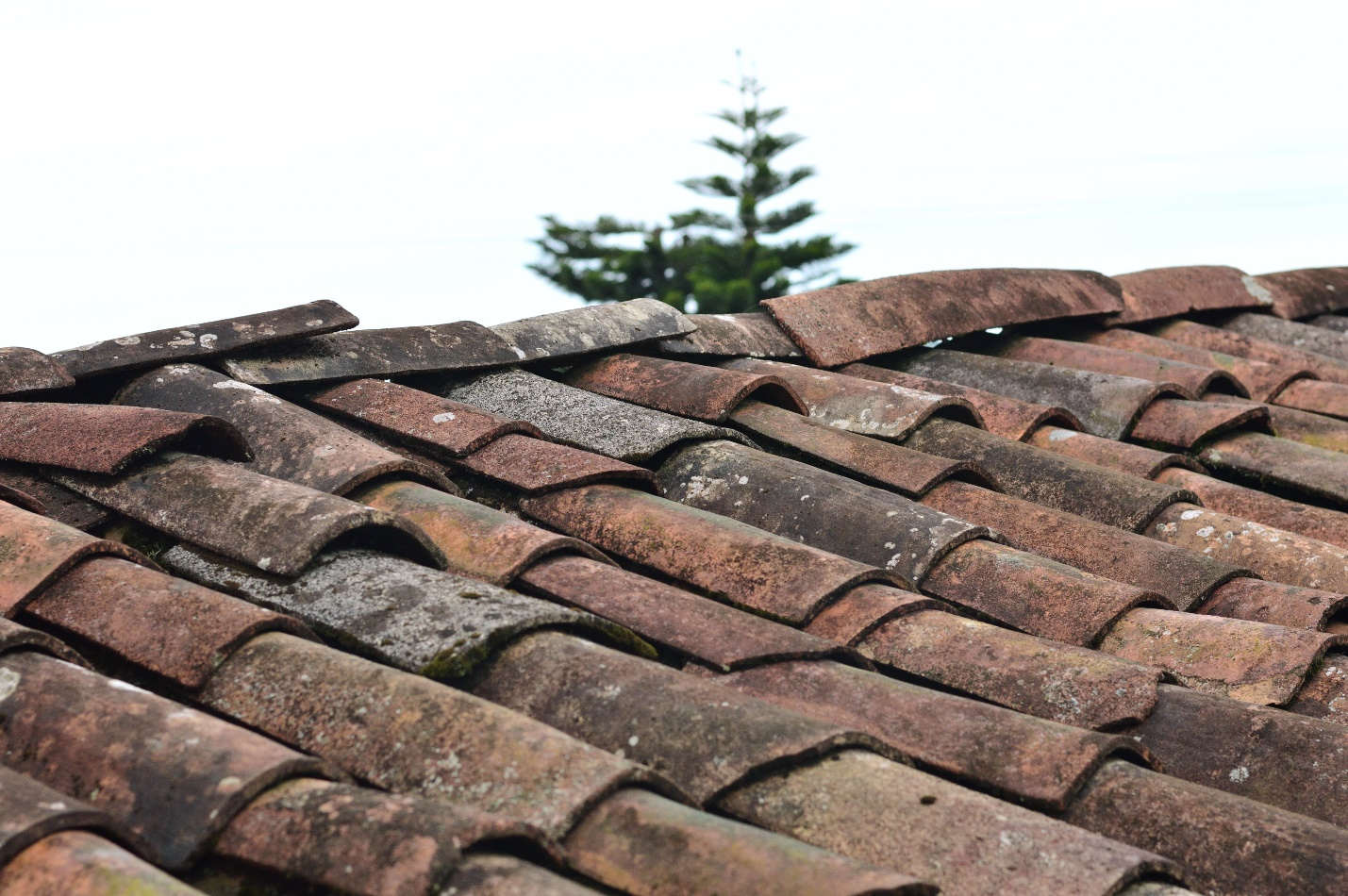 Read more about the article Common Roofing Mistakes Inexperienced Roofers Make